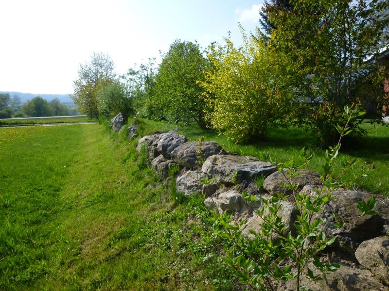 Gartengestaltung Geomantie asimo Stephan Kordick