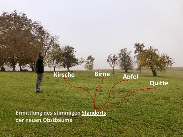 asimo Geomantie Stephan Kordick Geomantie Beratung Seminare Ausbildung